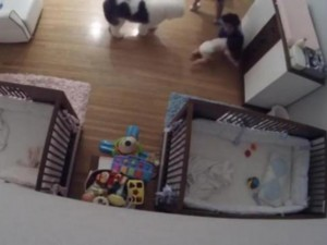 usa_florida-boy-9-makes-dramatic-catch-to-save-falling-baby-brother
